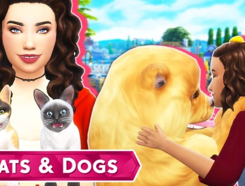 The Sims Archives - Cute Kittens Videos